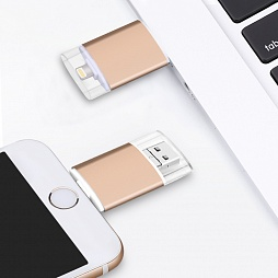 iPhone USB модель 1